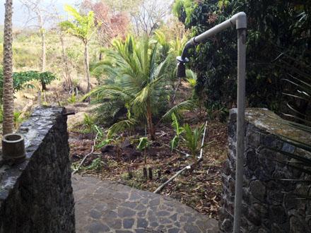 greywater garden western shower